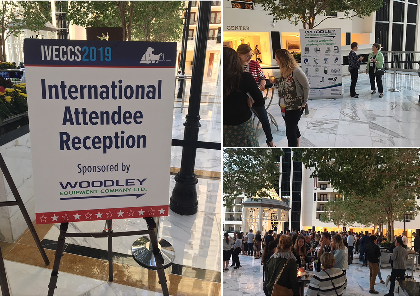 Woodley Sponsor the IVECCS 2019 International Attendee Reception