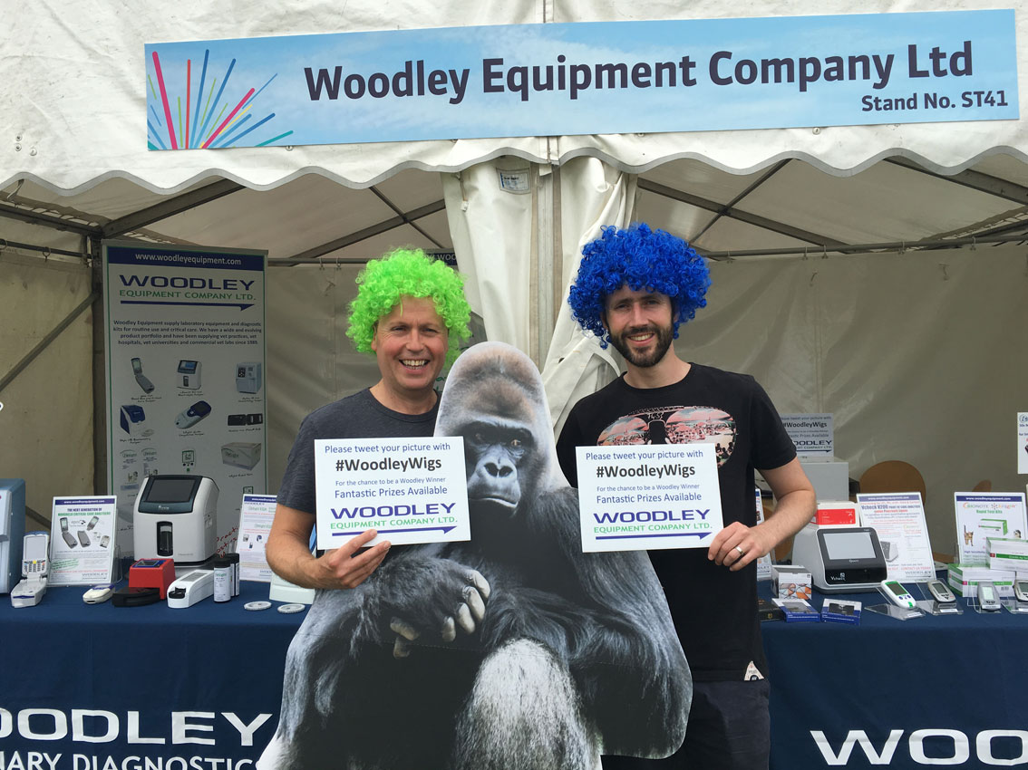 #WoodleyWigs at Vet Festival 2018